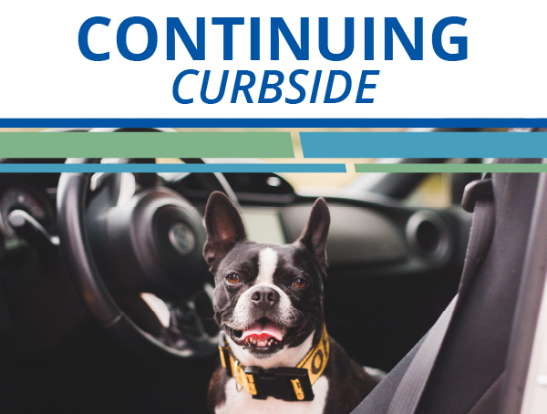 Curbside Care Continues - Chateau Veterinary Hospital