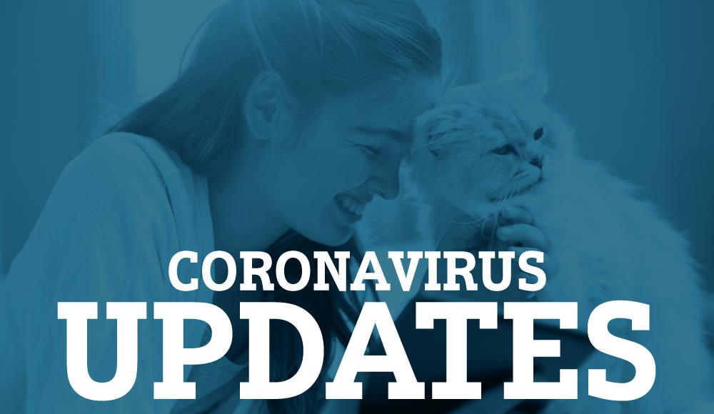 Coronavirus Updates - Chateau Veterinary Hospital