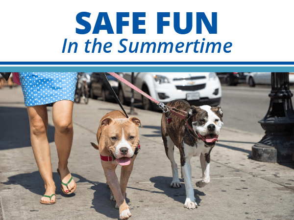 Safe Fun In the Summertime
